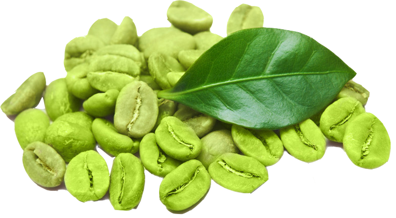 Café vert bienfaits