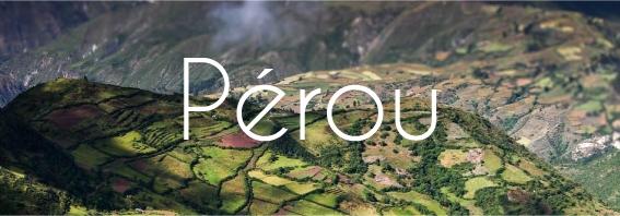 Pérou & Café