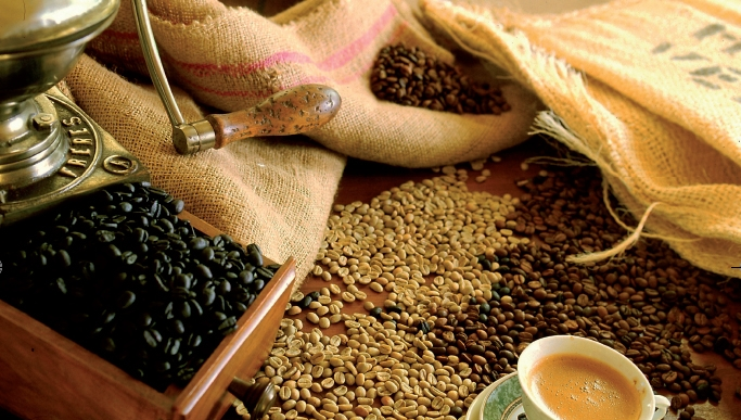 Les plants de café du Yémen au reste de monde.