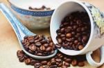 Quelle différence entre le café arabica et le robusta ?