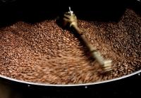 Découvrez la qualité du café du Costa Rica